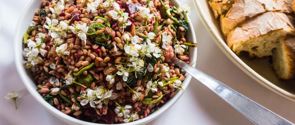 Farro: The Ancient Grain that Continues to Make Modern Meals Image